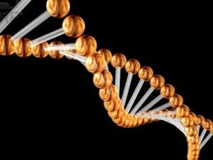 Codice-genetico