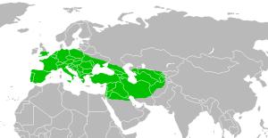 Range_of_Homo_neanderthalensis