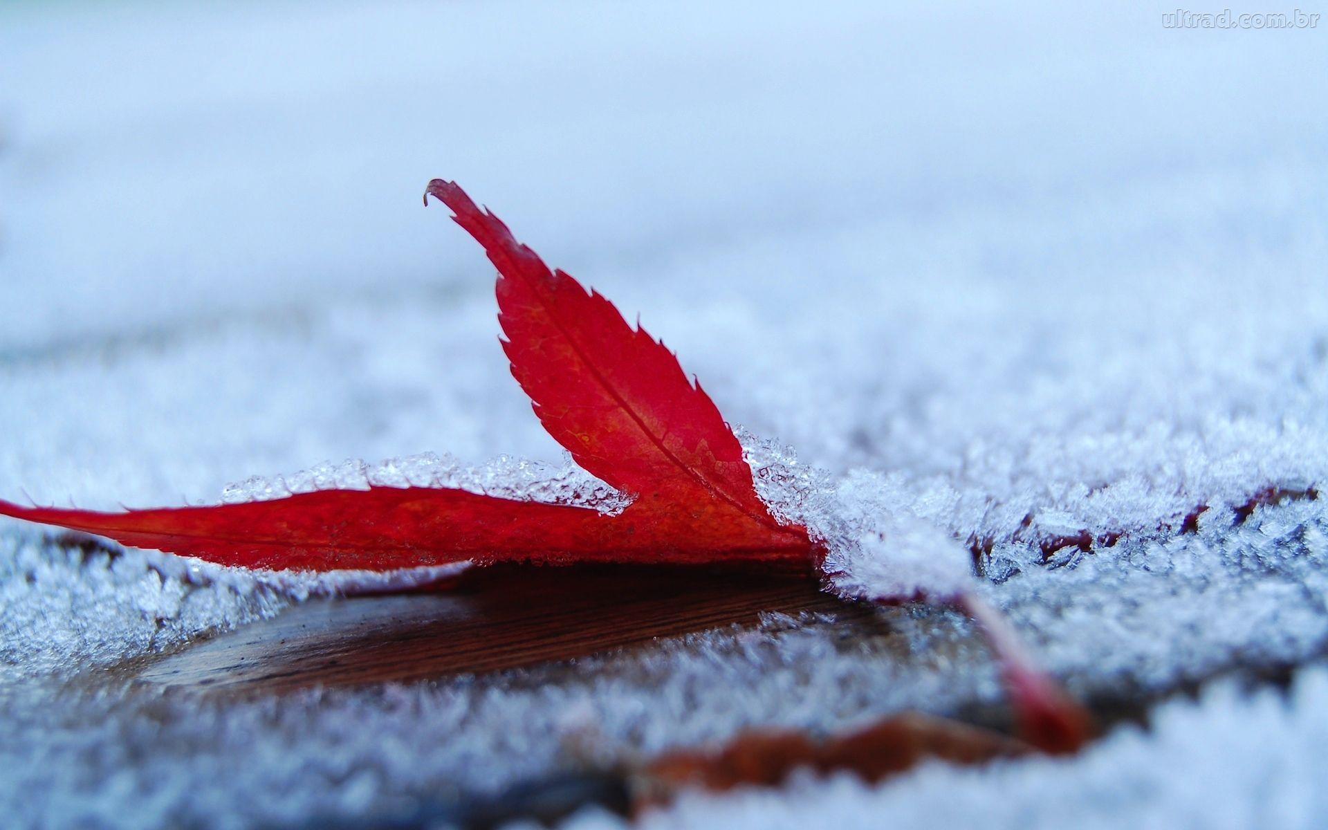 inverno | Clima Meteo 24